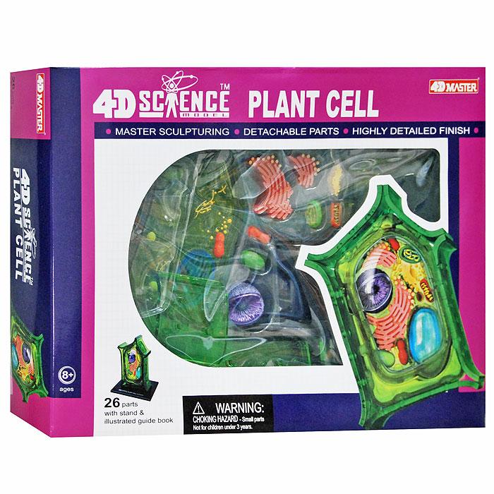 """Анатомическая модель """"Клетка растения"""""""