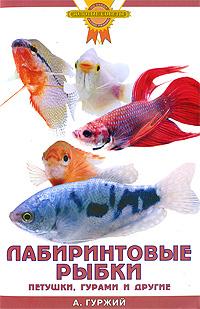 """Книга """"Лабиринтовые рыбки. Петушки, гурами и другие"""" А. Гуржий - купить книгу ISBN 978-5-9934-0077-8 с доставкой по почте в интернет-магазине OZON.ru"""