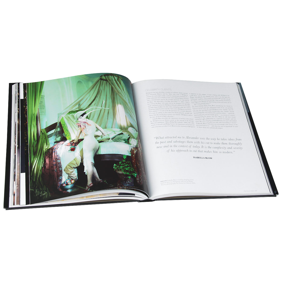 The Vilcek Foundation - 2015 Vilcek Prize Recipients Alexander mcqueen fashion visionary book