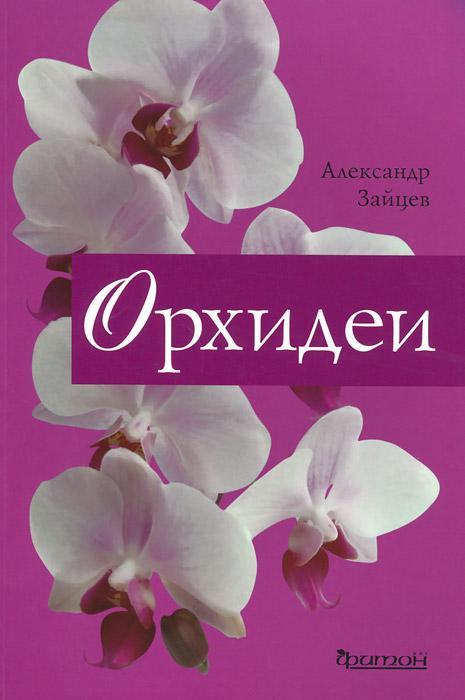 Фото Александр Зайцев Орхидеи. Купить  в РФ