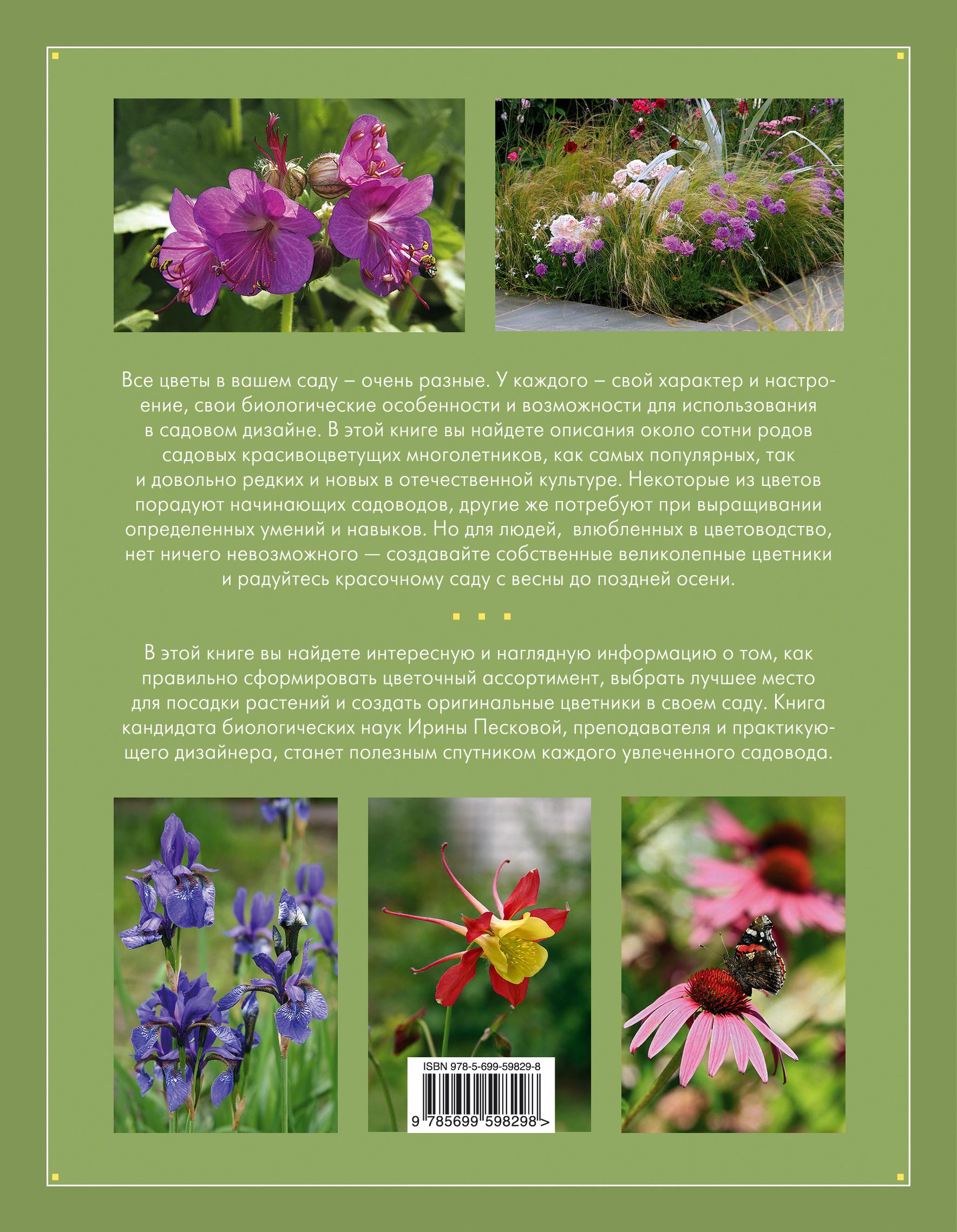 Садовые цветы и их описание
