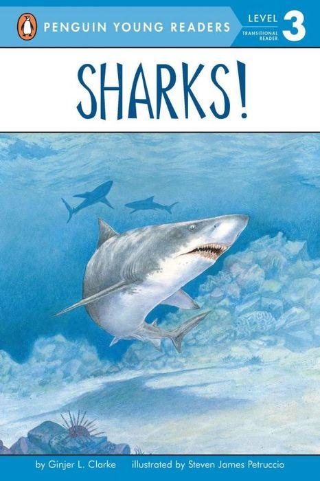 Фото Sharks!. Купить  в РФ