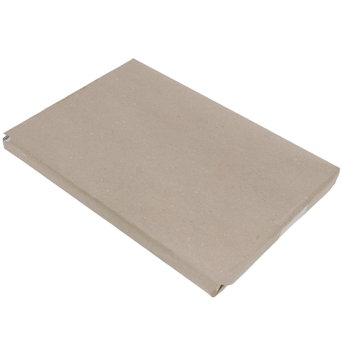 Бумага для черчения  Гознак , 100 листов, формат А4. БЧ-0552 -  Бумага и картон