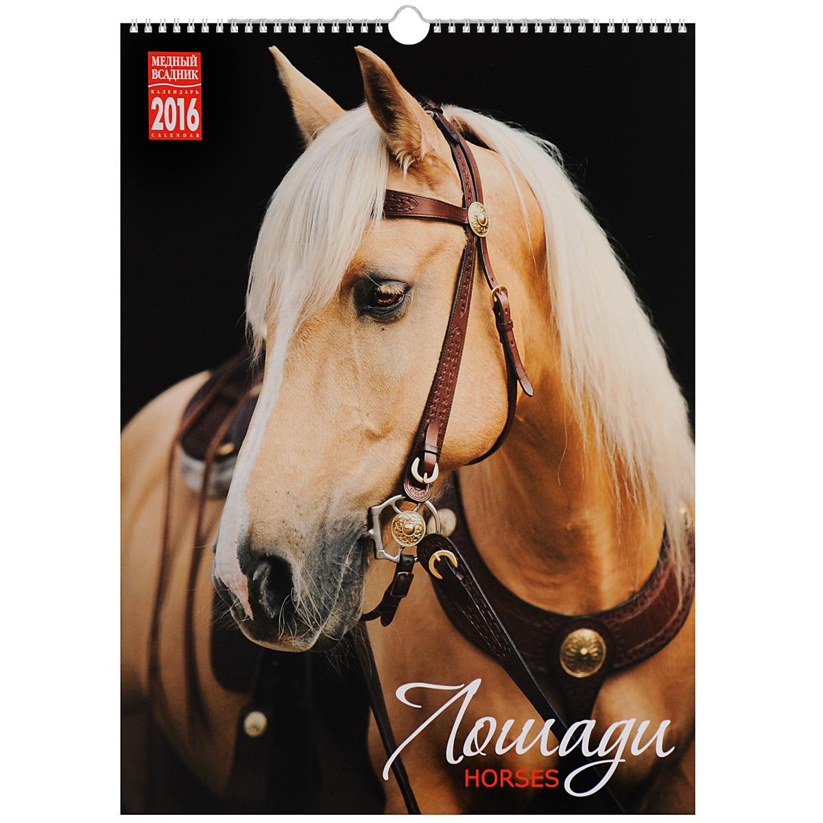 Фото Календарь 2016 (на спирали). Лошади / Horses. Купить  в РФ