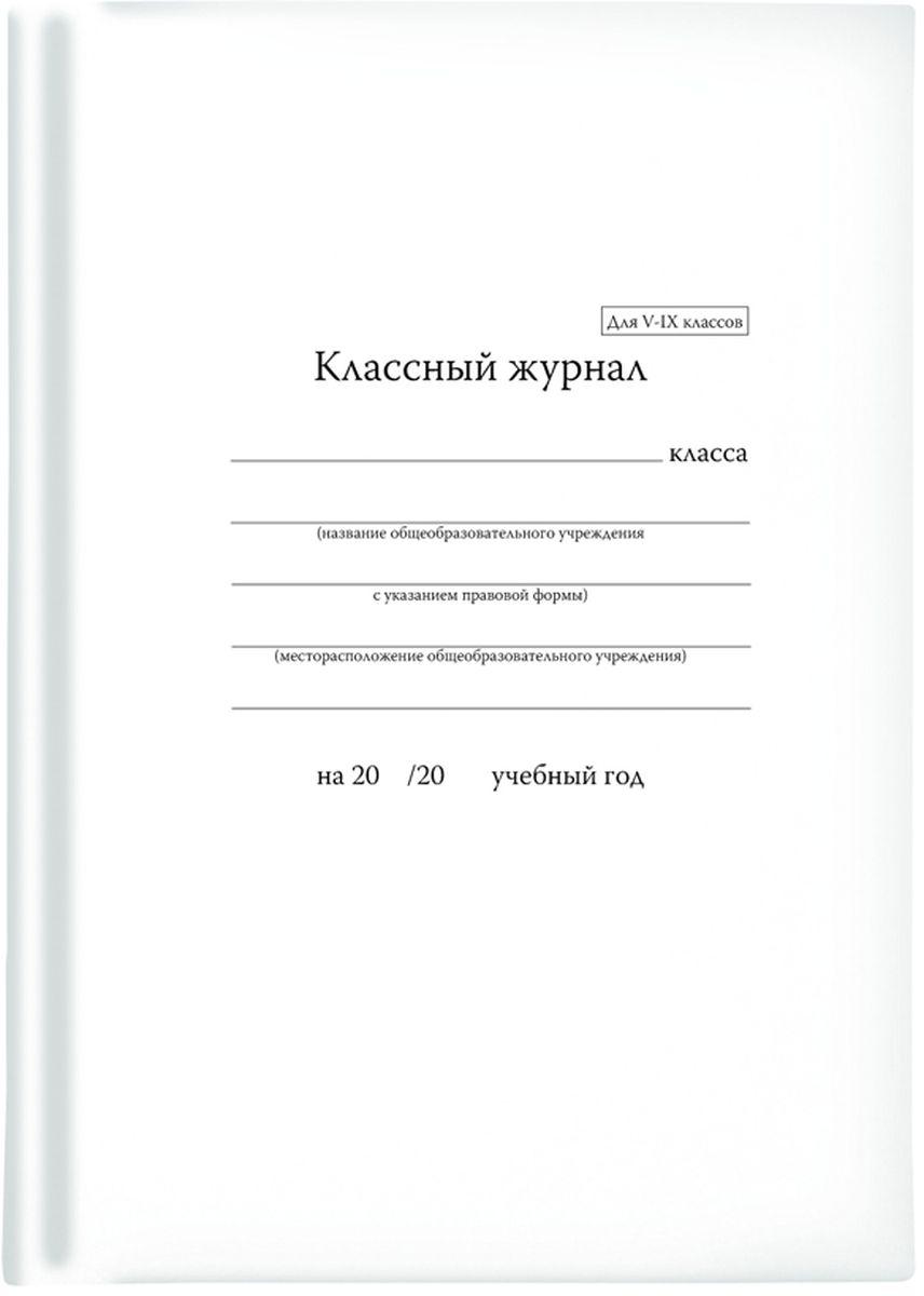 Альт Классный журнал для 5-9 классов -  Дневники