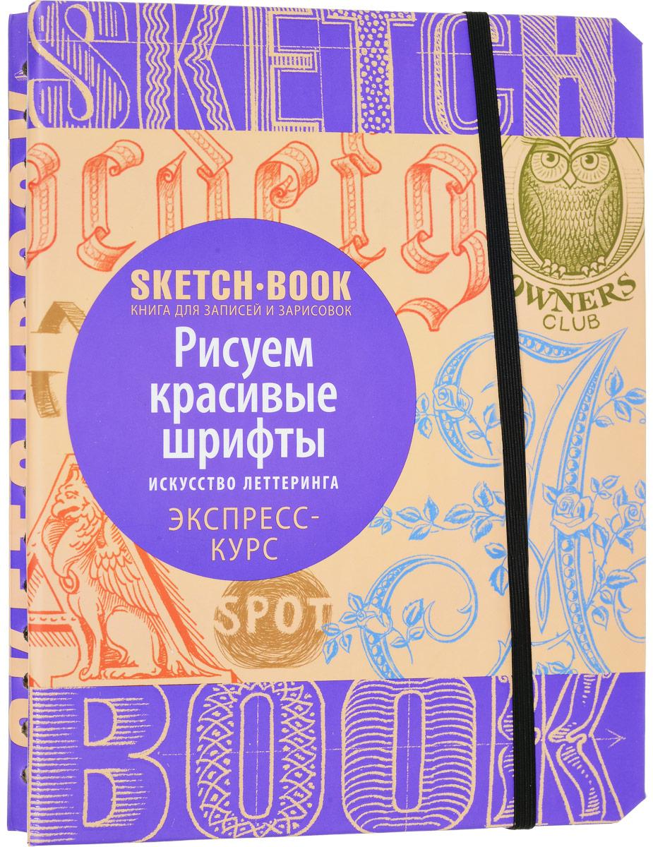 Sketchbook рисуем красивые шрифты искусство леттеринга