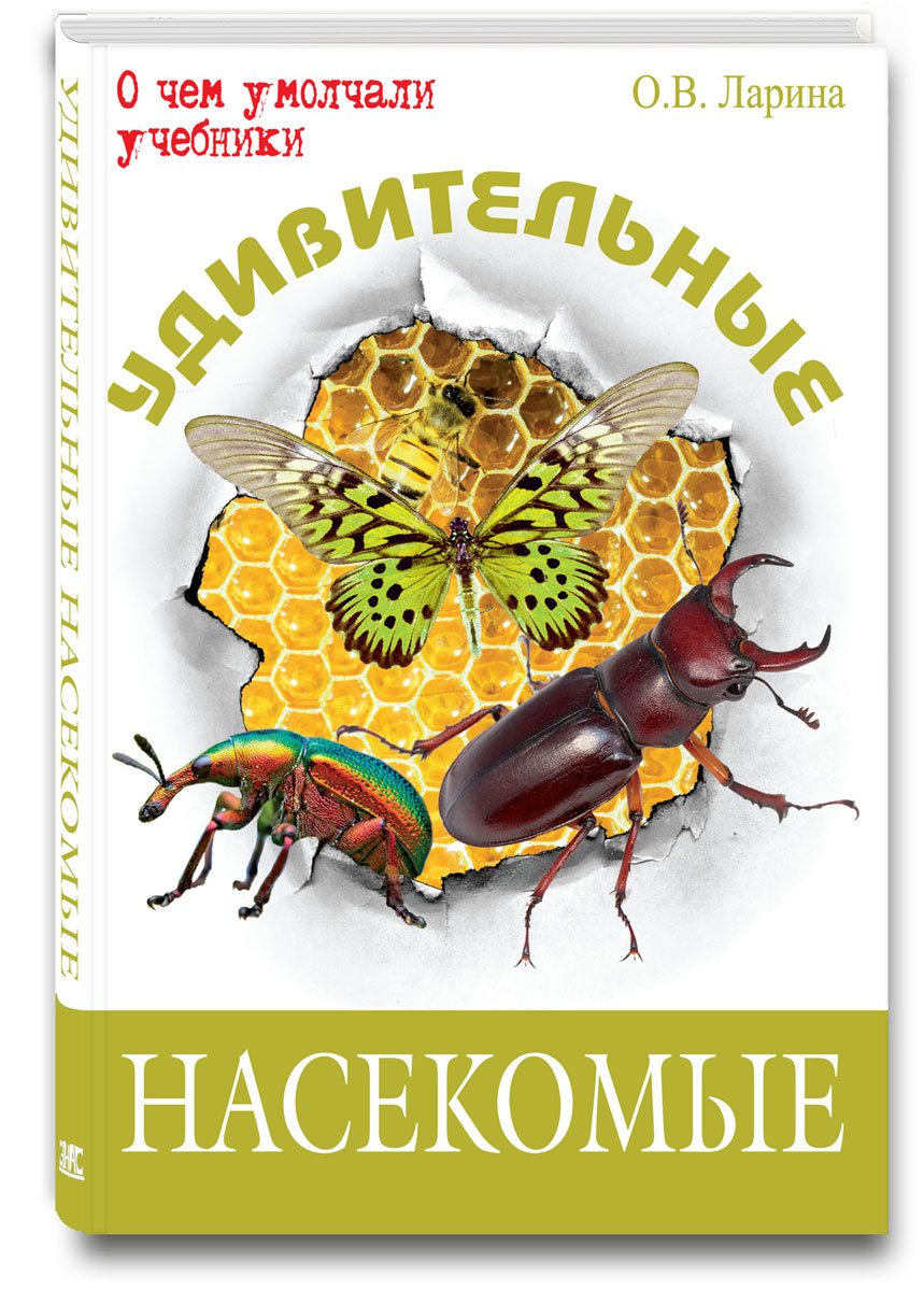 Фото О. В. Ларина Удивительные насекомые. Купить  в РФ