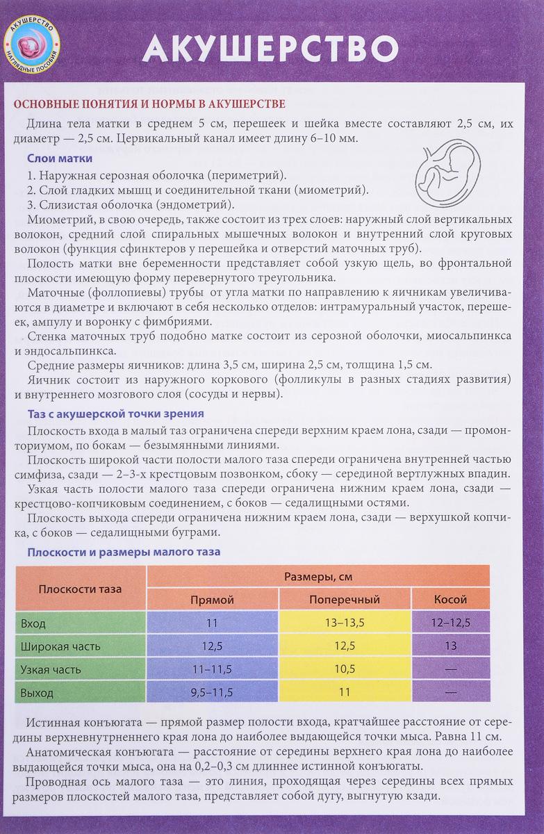 Нормы размеры таза при беременности