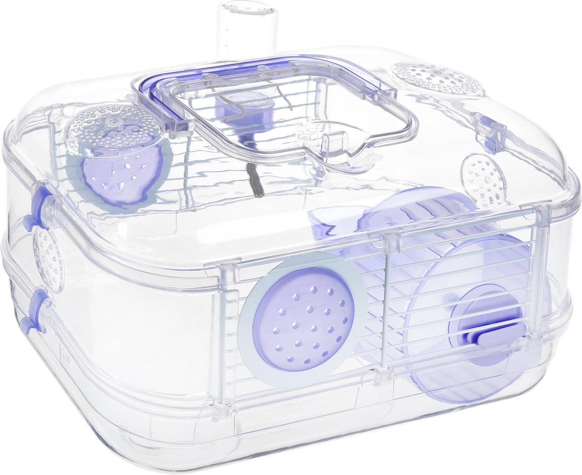 Клетка для грызунов Rody  Mini , цвет: лиловый, прозрачный, 30 х 20 х 18 см