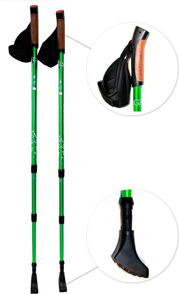 Палки для ходьбы рязань