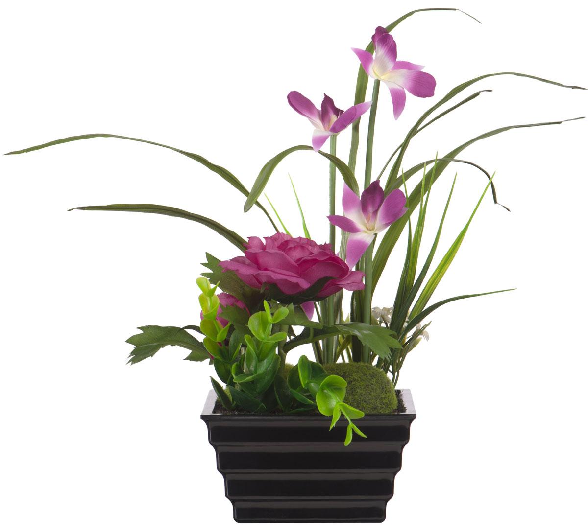 Всё просто : 16 самых красивых цветков в мире
