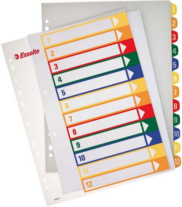 Разделитель для папки Esselte, 12 цветов -  Файлы и разделители