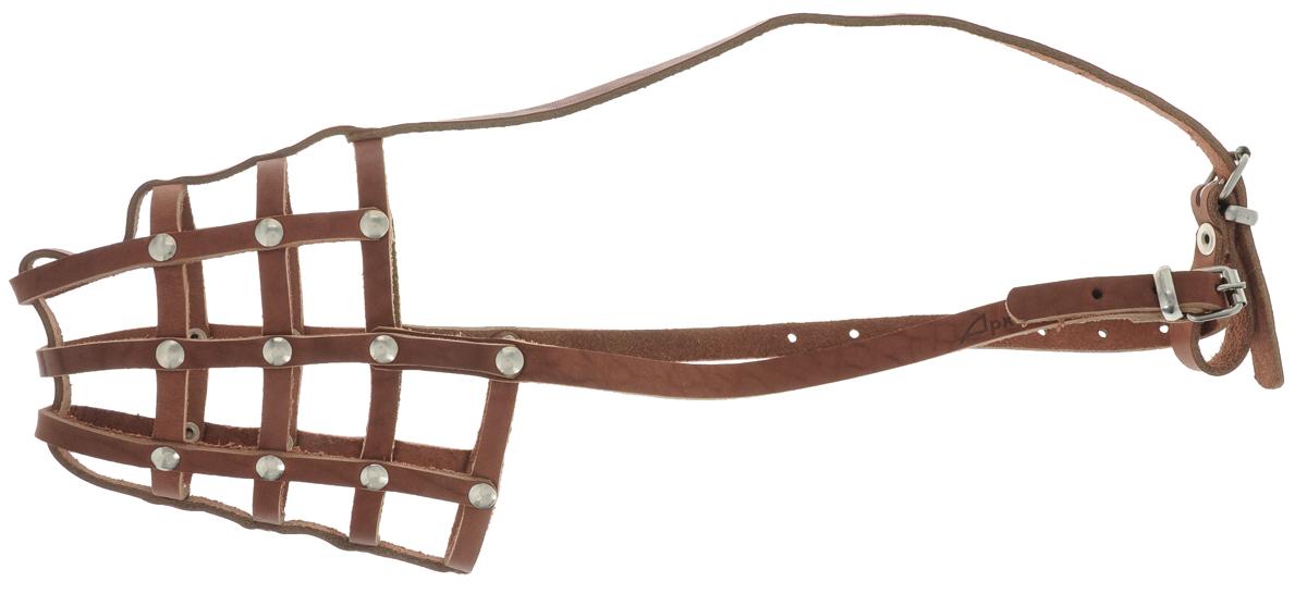 """Фото Намордник для собак """"Аркон"""", цвет: коньячный. Размер 28 см. н28. Купить  в РФ"""