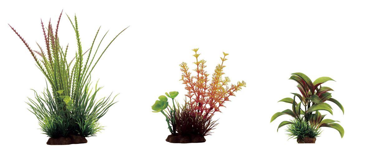 """Фото Растение для аквариума ArtUniq """"Гигрофила перистонадрезанная, амбулия оранжевая, альтернантера бетзикиана"""", высота 10-20 см, 3 шт. Купить  в РФ"""