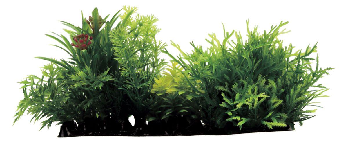 """Фото Композиция из растений для аквариума ArtUniq """"Мох"""", 15 x 7 x 9 см. Купить  в РФ"""
