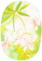 "Блюдо Luminarc ""Freesia"", 35 х 24 см"