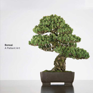 Купить Bonsai: A Patient Art в интернет-магазине OZON.ru