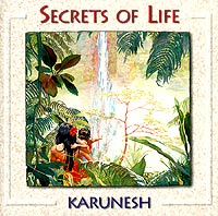 Karunesh.  Secrets Of Life Правительство звука