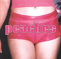 Peaches. The Teaches Of Peaches