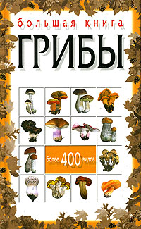 Н. Е. Макарова Большая книга. Грибы