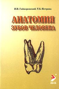 И. В. Гайворонский, Т. Б. Петрова Анатомия зубов человека винсент перез большой атлас анатомии человека