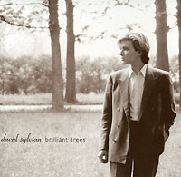Zakazat.ru: David Sylvian. Brilliant Trees