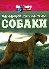 Discovery: Идеальный путеводитель: Собаки жаровня scovo сд 013 discovery