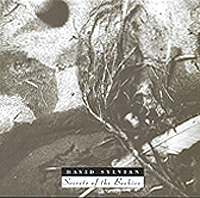 Дэвид Сильвиан David Sylvian. Secrets Of The Beehive