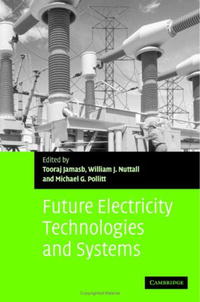 Future Electricity Technologies and Systems (Department of Applied Economics Occasional Papers) investment costs of renewable electricity technologies