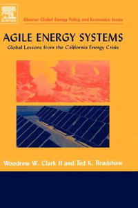 Agile Energy Systems: Global Lessons from the California Energy Crisis (Elsevier Topics in Global Energy Economics, Regulation and Policy) the economics of globalization policy perspectives from public economics