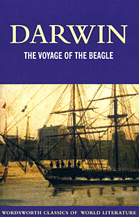 The Voyage of the Beagle up at the villa the pearl на английском языке