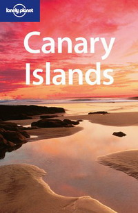 Canary Islands islands in the stream