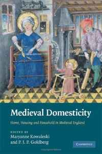 Medieval Domesticity: Home, Housing and Household in Medieval England women and subsidised housing in kwazulu natal