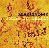 Chanticleer. Sound In Spirit ultra loud bicycle air horn truck siren sound 120db