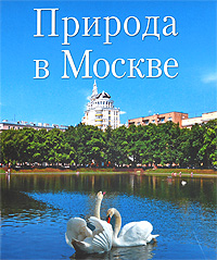 Природа в Москве купить щебень на севере москвы