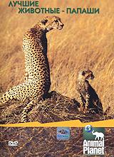 Animal Planet: Лучшие животные-папаши жаровня scovo сд 013 discovery