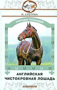 М. Суетина Английская чистокровная лошадь призы для гостей на свадьбе