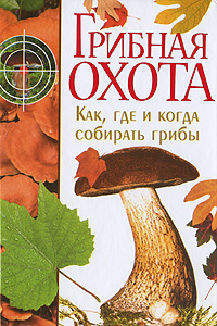 Грибная охота. Как, где и когда собирать грибы галлюциногенные грибы где купить