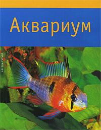 Аксель Гутьяр Аквариум аквариумные рыбки в ейске