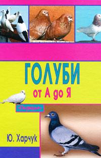 Ю. Харчук Голуби от А до Я год до школы от а до я тетрадь по подготовке к школе