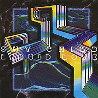 Новый студийный альбом нью-йоркского 8-битного инди-рок-проекта Shy Child. Новый диск станет четвертым в дискографии дуэта после дебюта 2002 года