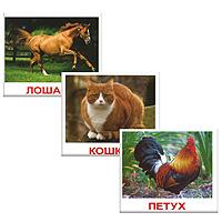 Вундеркинд с пеленок Обучающие карточки Домашние животные ВСПМК набор обучающих карточек мини 40 numbers числа вундеркинд с пеленок