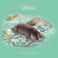 Quasi Quasi. Field Studies грипсы domino
