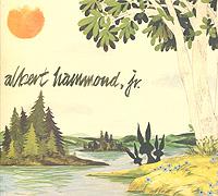 Альберт Хаммонд, мл. Albert Hammond, Jr. Yours To Keep rough