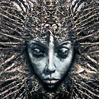 Новый студийный альбом французской команды, исполняющей Progressive Alternative Metal.