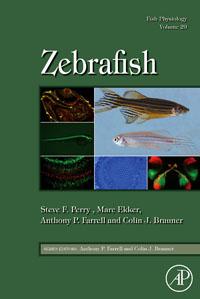 Zebrafish,29 xdevice blackbox 29
