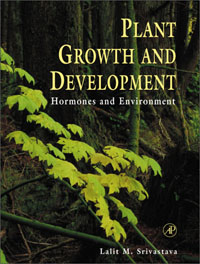 Plant Growth and Development, octavian s ksenzhek plant energetics