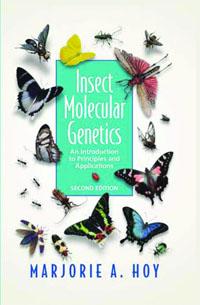 Insect Molecular Genetics,
