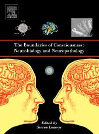 The Boundaries of Consciousness: Neurobiology and Neuropathology, neurobiology of epilepsy and aging 81