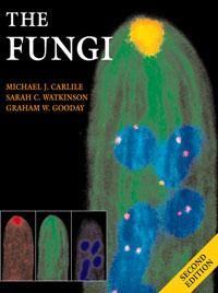 The Fungi, michael j carlile the fungi